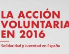 Informe PVE (Plataforma de Voluntariado de España)